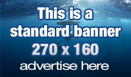 NOD Banner Standard Static