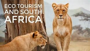 Eco Tourism further afield